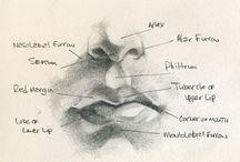portraits,anatomy