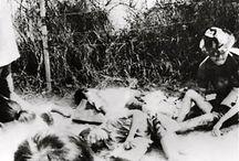 Dân Việt bị CS/CSBV thảm sát