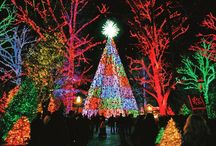 Holiday Lights / Brightly-lit celebrations from around the world.