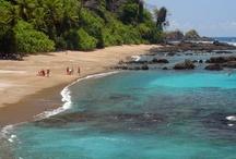 Travel: Costa rica / by Tiffanie Bryant