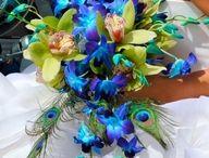 Wedding Ideas  / by Eileen Doane