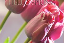 Hello Spring! / Everything about Spring