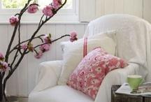 **Cherry Blossom Love**