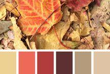 kleur keuze