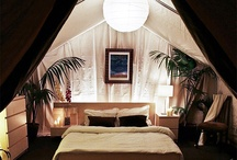 Safari Lodge / by Henri Frencken