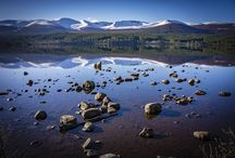 Cairngorm Spring / Cairngorms National Park