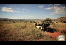 Videos of Tswalu