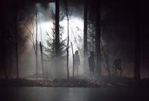 Woods /HS