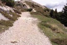 La Grande Guerra in Trentino / Alla scoperta della montagna trentina attraverso i luoghi della Grande Guerra