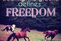 Horse Quotes / by Aquilina Seledkov
