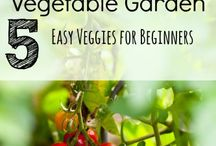 Unpretentious Gardening / Organic gardening, vegetable garden / by Abandoning Pretense