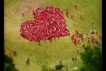 hearts / by Lynda Chittenden Weathersbee