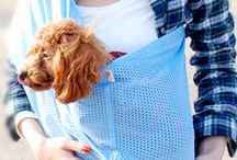 dog sling ドッグスリング 抱っこだワン / ワンちゃんも眠れるドッグスリング 小型犬はもちろん中型犬でも抱っこが軽い  Dog sleeping dog sling Hug is light even in small dogs, of course medium-sized dog