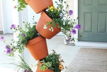 Gardening / Easy ways to add some TLC to the outside of your home, gardening tips for beginners too!