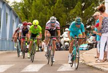 Tour de France / Juillet 2016