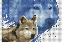 Applikationen Wolf