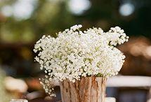 Ideas for Jenn & Rom's Wedding