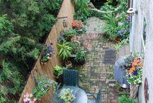 Folkestone garden
