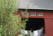 were you born in a barn? / barns and barn doors