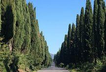 Italie, Agriturismo Eucaliptus / Eucaliptus, prachtig gelegen Agriturismo met kleine Agricampeggio in Toscane op 10 km van zee!