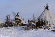 CHOOM IN NORTH-WEST SIBERIA / http://www.lifeonthinice.org/index.php#mi=2&pt=1&pi=10000&s=4&p=14&a=0&at=0