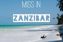 Zanzibar / Everything travel related to Zanzibar
