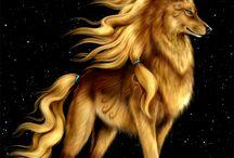 Loups planète