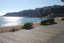 ENTORN - platges / Estem en plena Costa Brava on hi ha les millors platges del mar Mediterrani;  d'aigua transparent i amb gran varietat de tipus de platja, totes elles amb uns paisatges de gran valor.