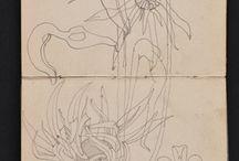 disegni - illustrazioni
