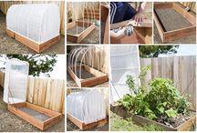 Garden & Backyard DIY / DIY Ideas for your garden