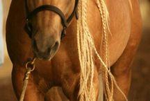 """Love"" Horse"