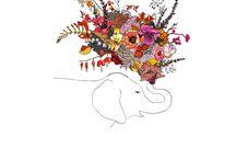 animals&flowers&..