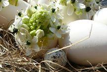 Pasqua-Velikonoce