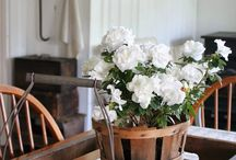 Home Sweet Country Home / Home decorating ideas for the farmhouse {and farmhouse wannabes}