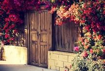 Doorways to my heart / by Belinda Nations