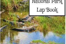 Everglades National Park Unit