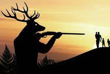protect wild
