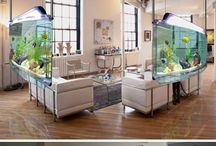 Aquariums & Fish Tanks