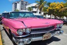 好きな車♡
