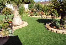 Backyard Oasis / by Ellie Hickey