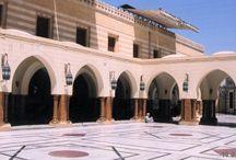 Al-Sayyidah Nafisa Bint Hassan al-Anwar Mosque