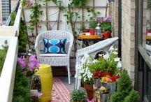 zahrada plot