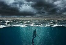 spearfishing / chasse sous marine
