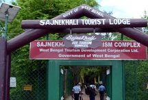 Sajnekhali Tourist Lodge / Sunderbans, P.O: Pakhiralaya, P.S.:Gosaba Pin:743379, Phone:(03218) 214960 Mobile:9732509925 E-mail:sajnekhaliwbt22@gmail.com