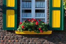 ∆ Window & Door
