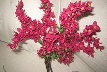 miniatyrer växter och blommor / by Inger Olsson