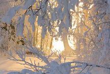 Zdjęcia - Zima