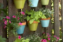 Garden Potting Ideas / by Katheryn Peterson