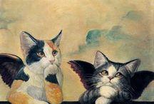 Skrzydlate koty..