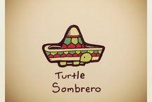 Turtle xx